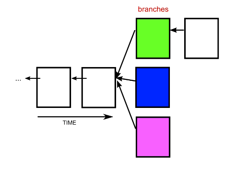 blockchain-branches