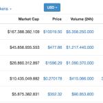 Un Bitcoin vale 10,000 Dollari, è Massimo storico