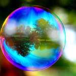 La bolla speculativa
