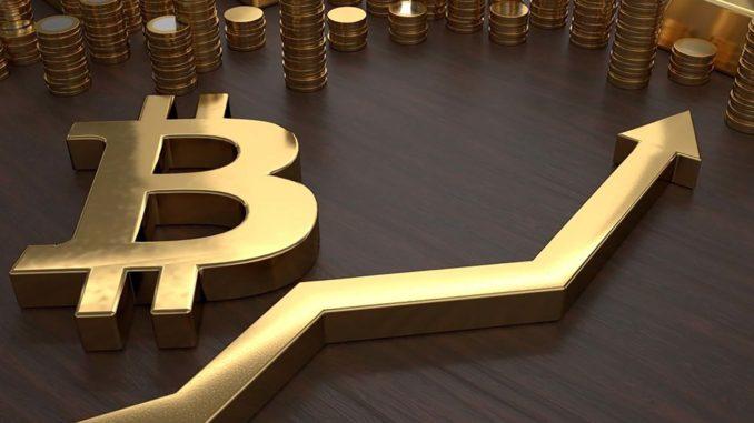 fiducia negli investimenti bitcoin winklevoss